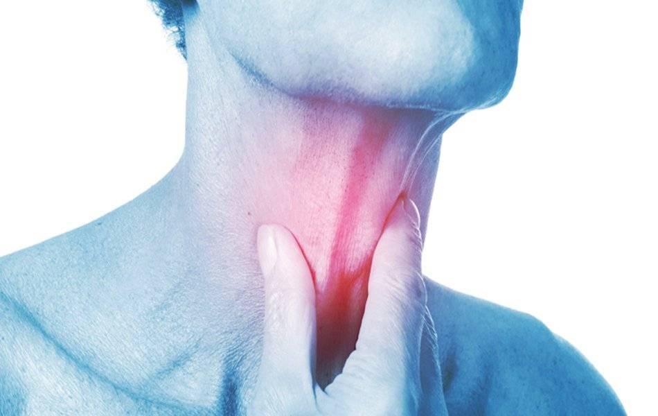 Трахеит. причины, симптомы, диагностика и лечение болезни. профилактика и эффективное лечение трахеита у детей и взрослых. :: polismed.com