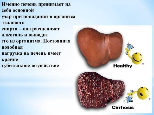 Чем можно почистить печень после употребления алкогольных напитков