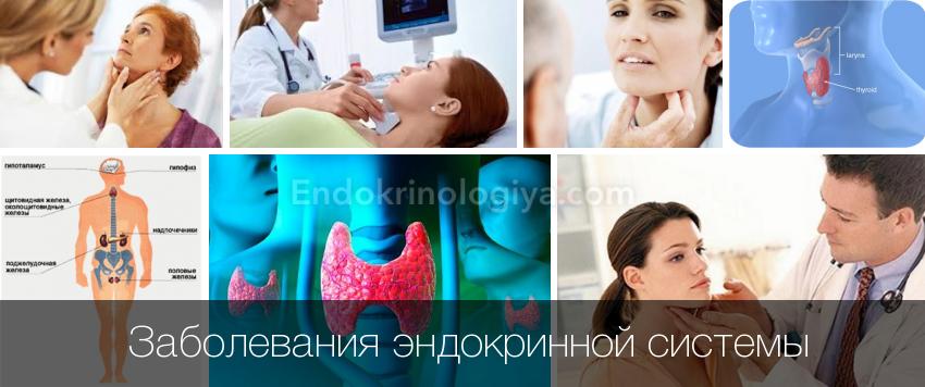 Заболевания эндокринной системы человека: симптомы и профилактика