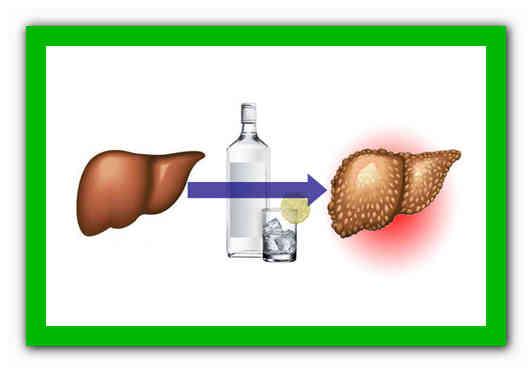 Как восстановить печень после алкоголя народными средствами?