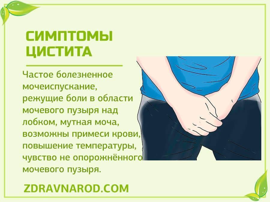 Цистит у женщин: препараты для профилактики и лечения