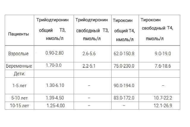 тироксин общий т4 норма