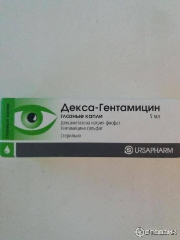 Декс гентамицин: состав, инструкция по применению, аналоги