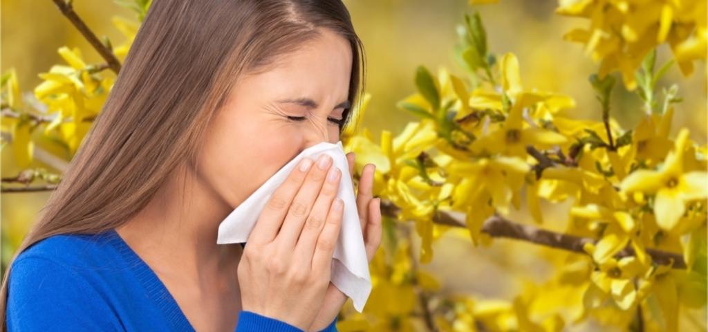 Как вылечить аллергический ринит народные средства