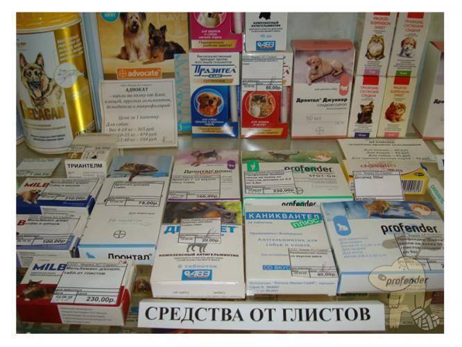 таблетки от глистов профилактика