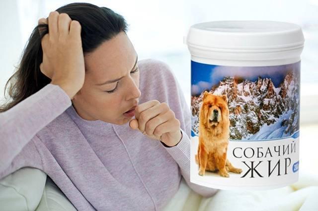 Лечение кашля жиром: барсучим, медвежим, козим, бараним, гусиным