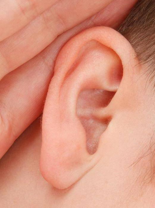 Можно ли греть ухо при отите когда оно болит и как правильно