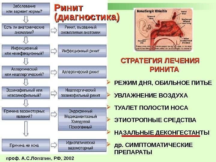 Вазомоторный ринит - симптомы и лечение у взрослых, препараты | здрав-лаб