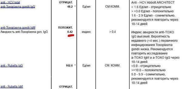 Аскариды. симптомы и признаки, диагностика, лечение и профилактика аскаридоза