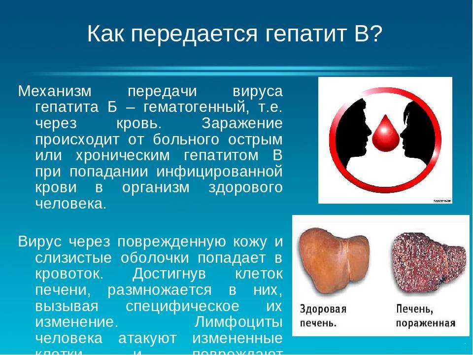 Может ли передаваться гепатит воздушно-капельным путем