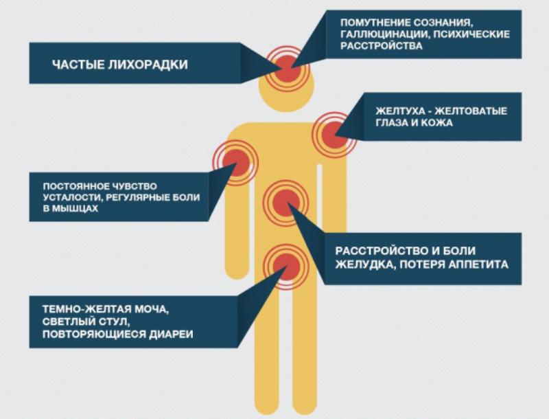 первые симптомы гепатита с у мужчин