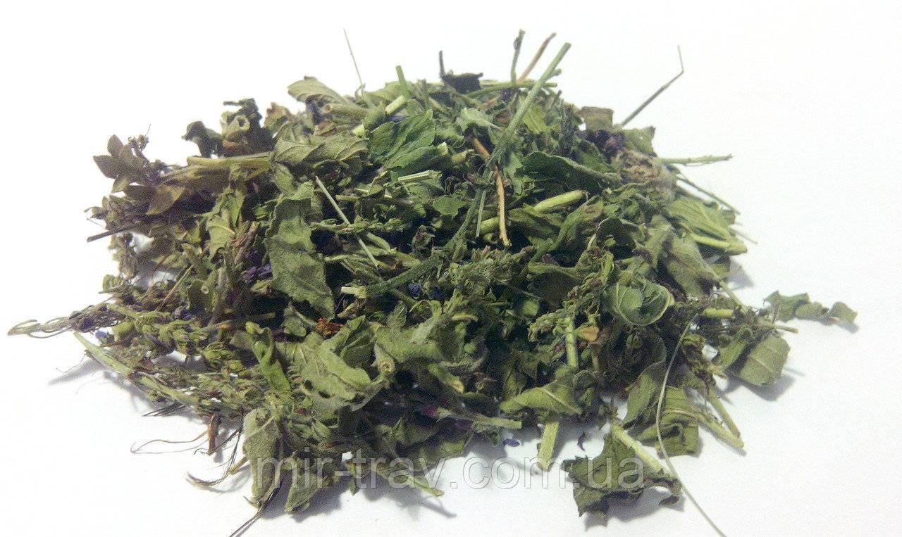 Травы для полоскания горла при ангине, фарингите и ларингите