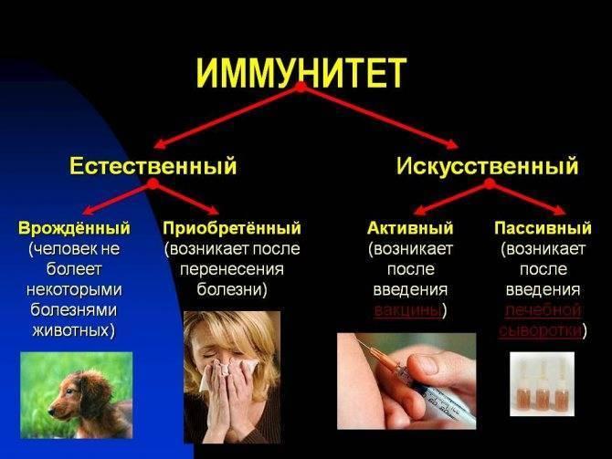 Назофарингит заразен для окружающих