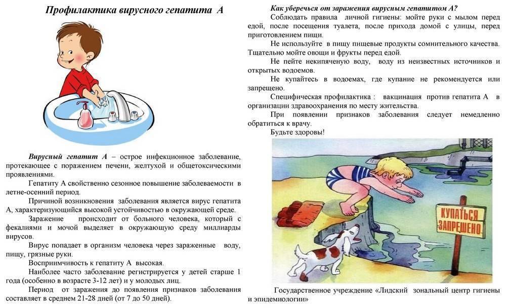 Желтуха: причины, симптомы и лечение у детей и взрослых