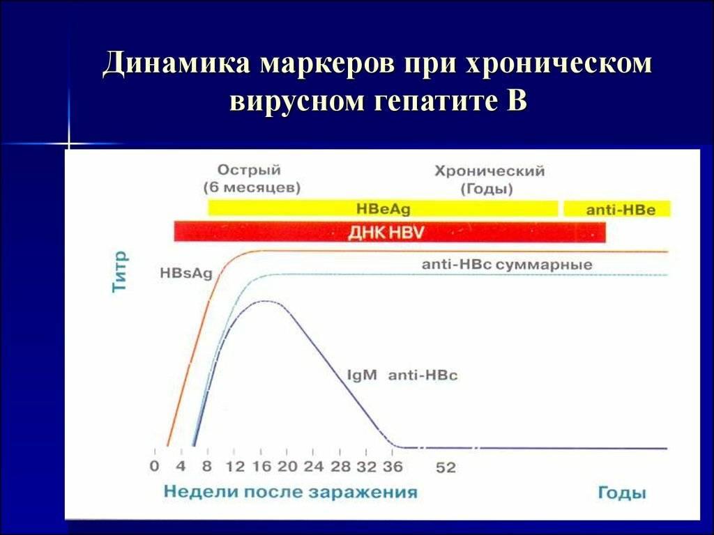 Анализ крови на маркеры вирусного гепатита                                            (антитела к гепатиту)