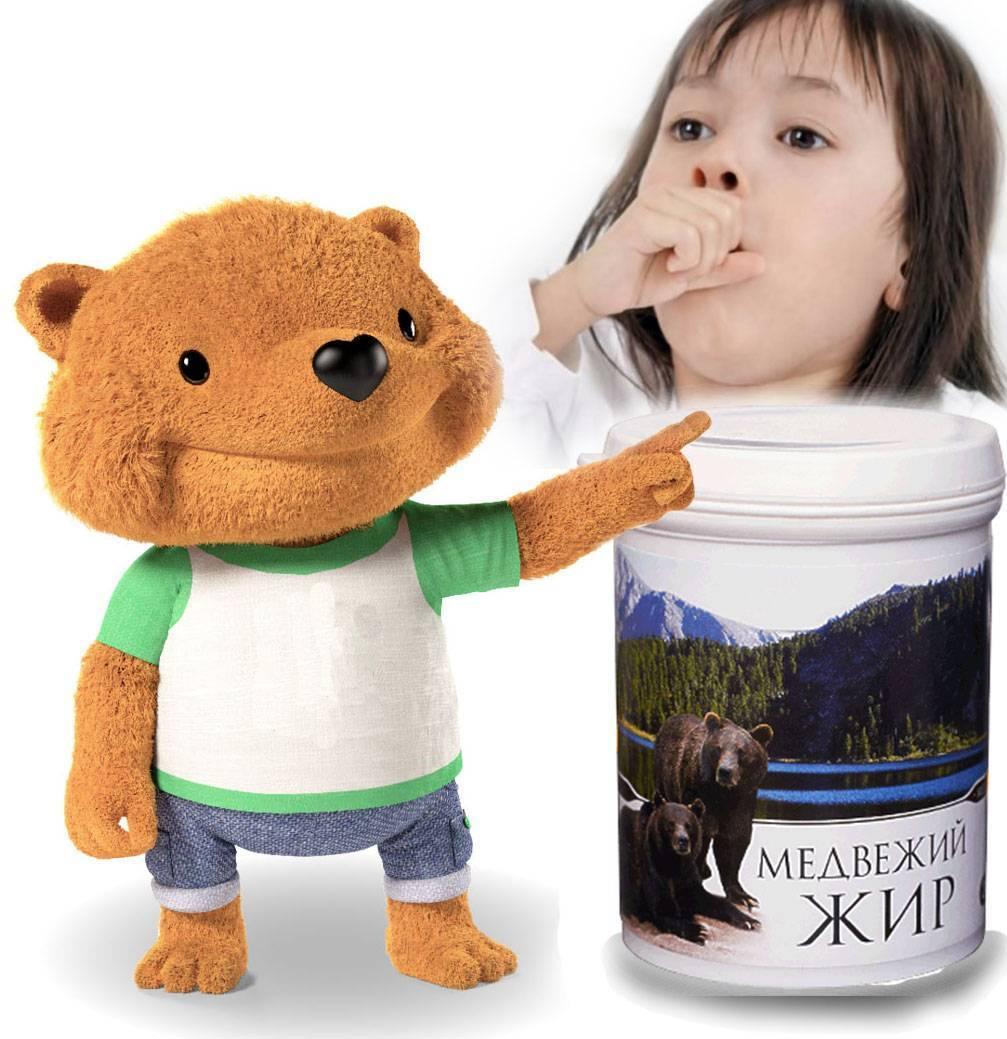 Медвежий жир при кашле (полезные свойства и рецепты)