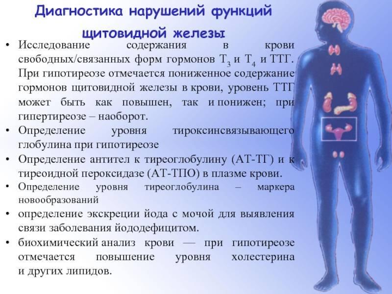 ттг тиреотропин выше нормы