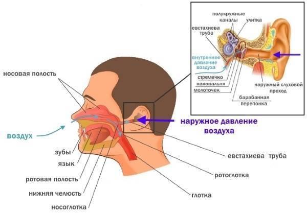 заложенность носа и ушей причины