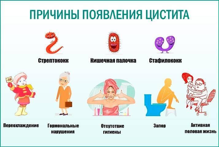 Цистит у ребенка 2-3 лет: симптомы и лечение, как распознать, признаки