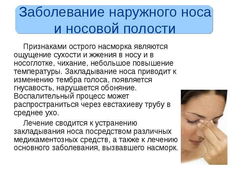 Сухость в носу: причины, что делать если сохнет слизистая носа