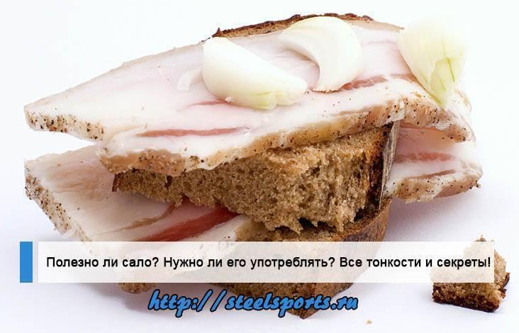 Сало свиное – вред и польза продукта