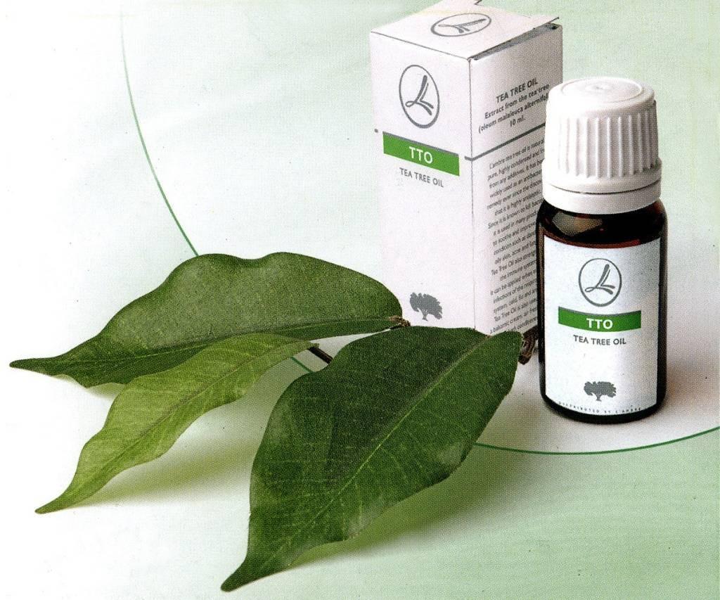 Нужен совет  - использование масла чайного дерева при насморке. закапала в чистом  виде - запись пользователя алия (id1807291) в сообществе здоровье новорожденных в категории насморк и прочие заболевания носа - babyblog.ru