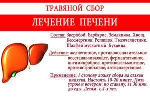 Народные средства от цирроза печени – 12 эффективных способов - народная медицина | природушка.ру