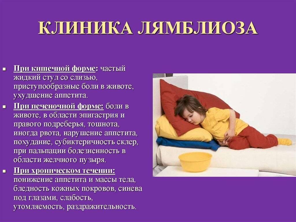 Симптомы лямблий у взрослых и лечение