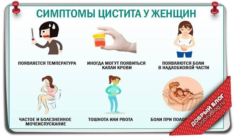 Цистит признаки у женщин какие боли внизу живота