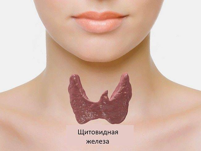 Коллоидная киста щитовидной железы у детей лечение