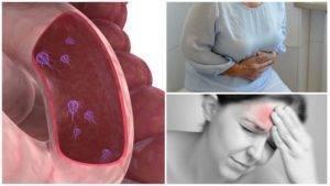 Лямблиоз у взрослых. симптомы, схема лечения, народные средства, препараты