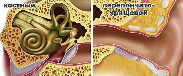 Кровь из уха у ребенка при отите: причины, первая помощь