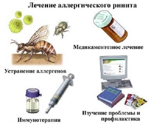 Выбираем назальный спрей от аллергического ринита
