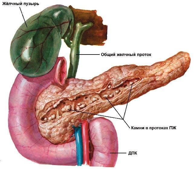 беременность при панкреатите и холецистите