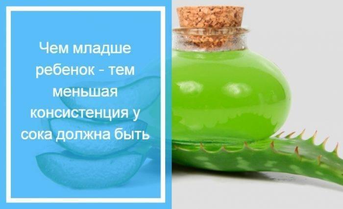 Сок алоэ в нос для детей. как приготовить и применять капли для лечения насморка?