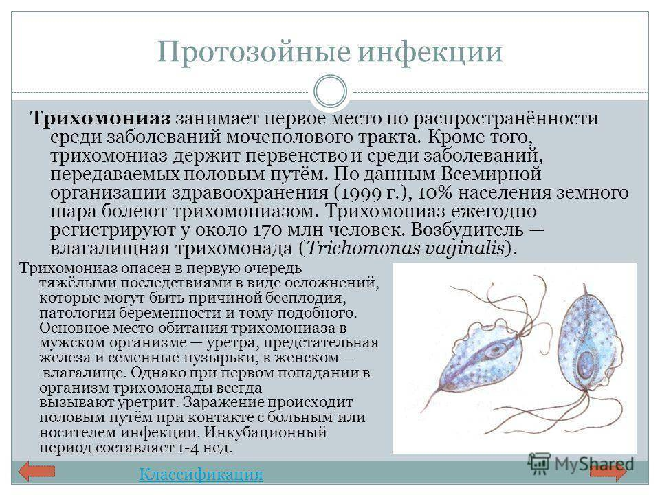 Протозойные инфекции человека