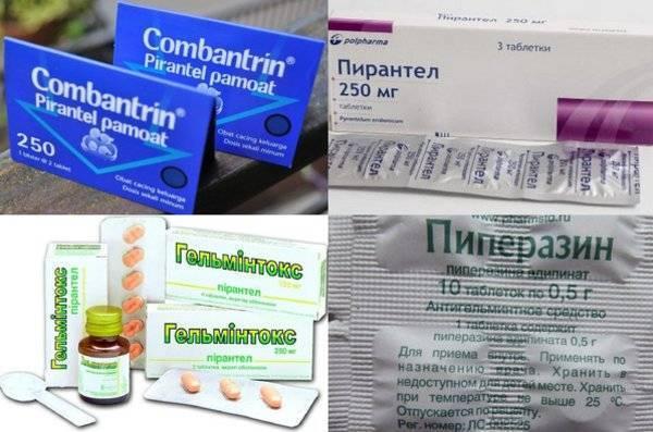какие таблетки можно беременным от глистов