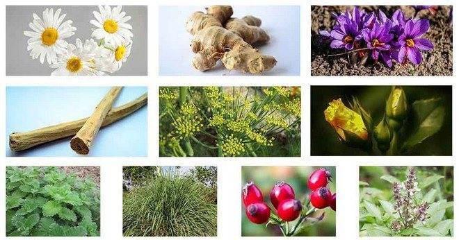 Народные средства от бессонницы, травы, эфирные масла, продукты – что помогает от бессонницы?