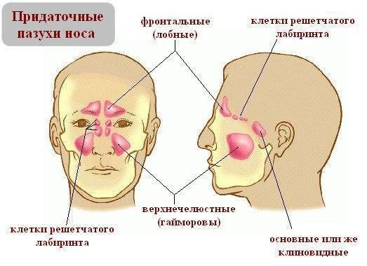 Болит голова и давление в носу — головные боли