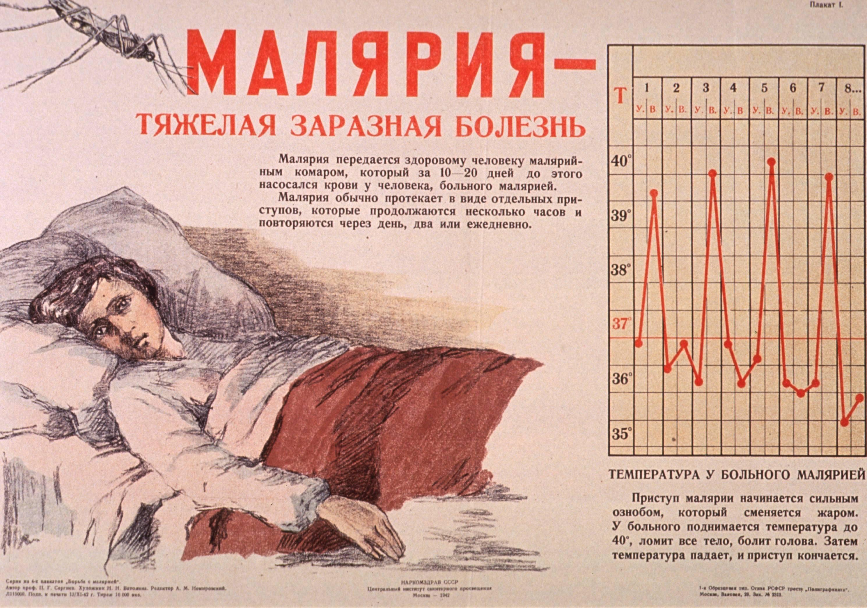 передается ли малярия от человека к человеку