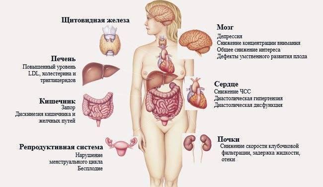 Почему увеличивается щитовидная железа