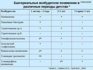 Стрептококк: пути передачи, симптомы и лечение   все о паразитах