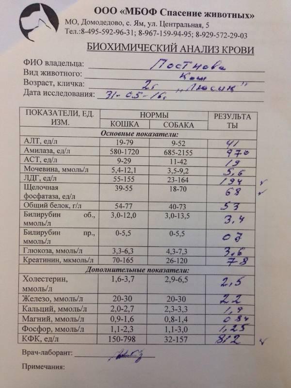 Какие анализы прежде всего нужно сдать при псориазе?