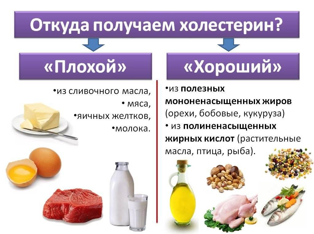 """Как повысить уровень """"хорошего"""" холестерина лпвп: 8 способов"""
