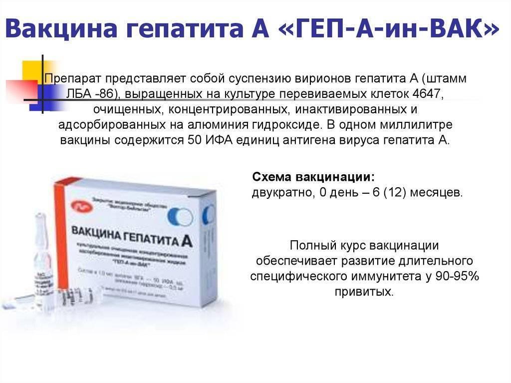 вакцинация от гепатита а