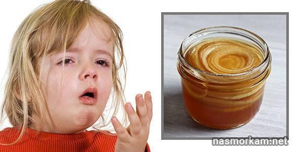 Лук с медом от кашля: рецепты для быстрого выздоровления