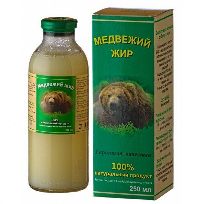 как лечить кашель медвежьим жиром