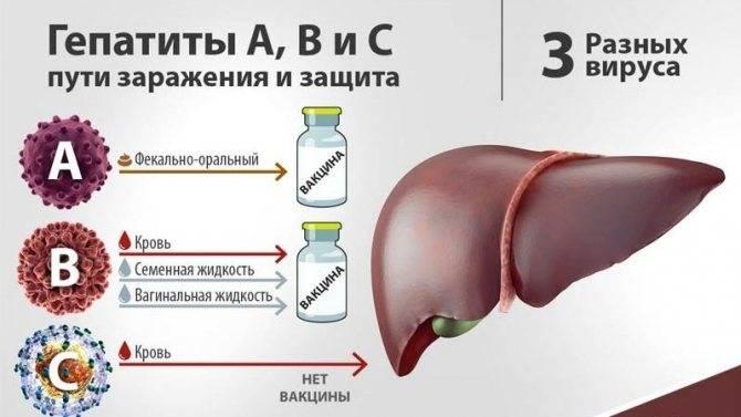 Продолжительность жизни при гепатите с