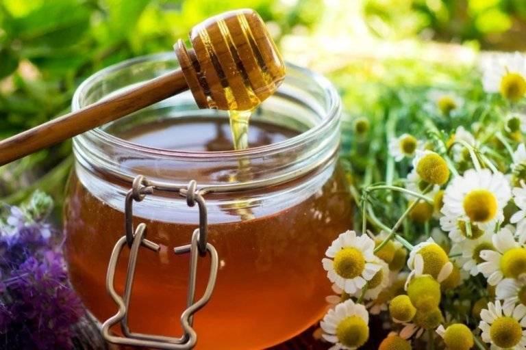 Лечение глаз медом в домашних условиях: рецепты, особенности терапии и противопоказания