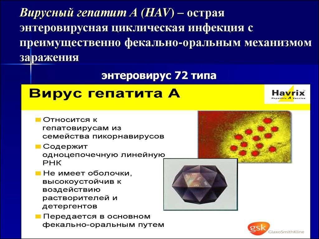 вирусный гепатит с лечение